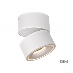 Mistic Lighting BROKEN 9W LED DIM Matt Biały MSTC-05410990 Sufitowa