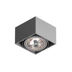 Cleoni Tuz T019K1Sh max. 1x60W. G53. 12V Stropowy