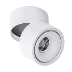 Azzardo COSTA WHITE 1xLED Reflektor Sufitowy Biały AZ2856